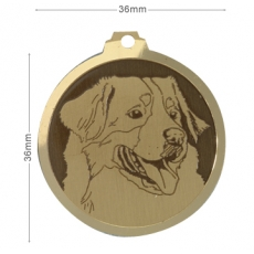 medaille chien bouvier bernois