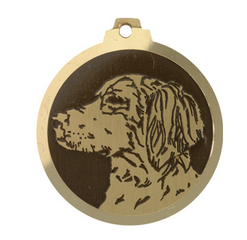 medaille chien epagneul breton