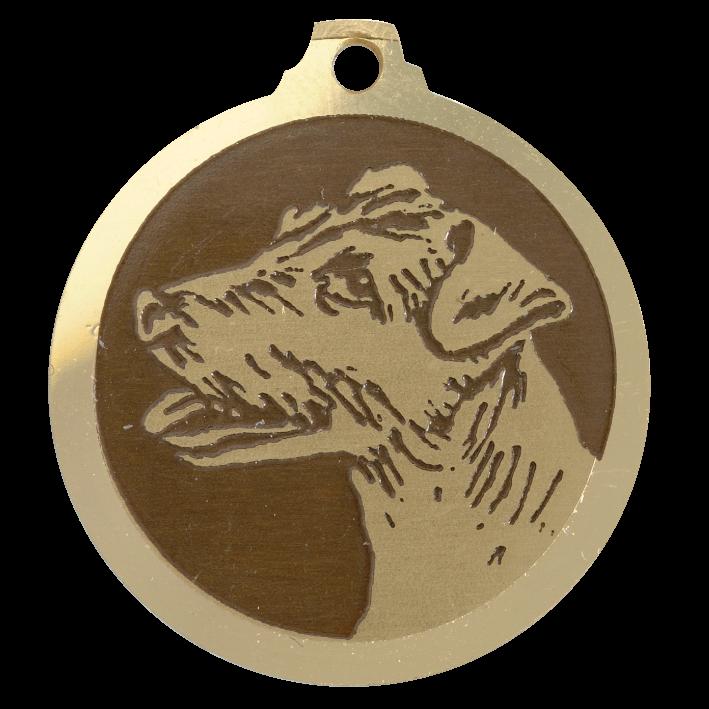 medaille chien jack russel