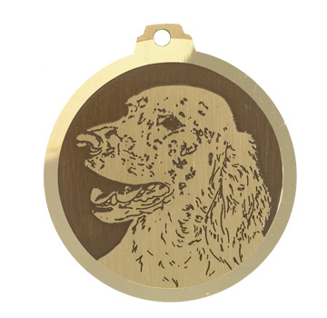 medaille chien setter anglais