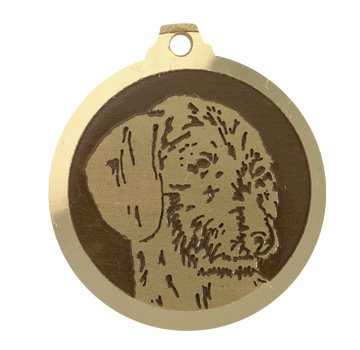 medaille chien teckel poils durs