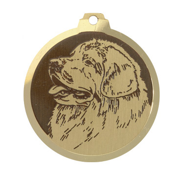 medaille chien terre neuve