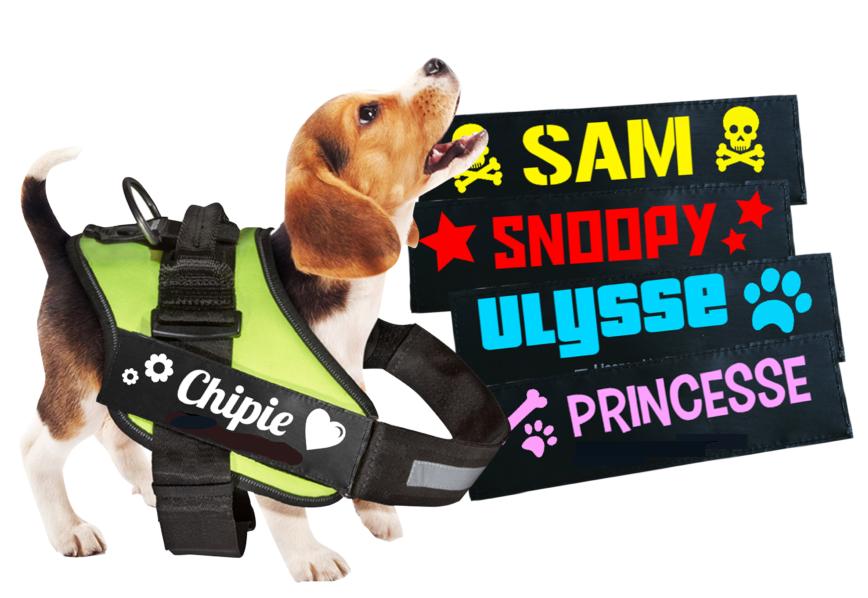 Etiquette Velcro harnais julius K9 chien